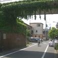 16 「緑のトンネル」ガード