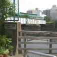 21 仙台堀川公園