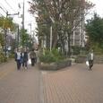 22大島緑道公園1