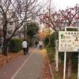 25大島緑道公園4
