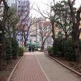 31 亀戸緑道公園(水神森)