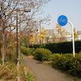 7南砂緑道公園4